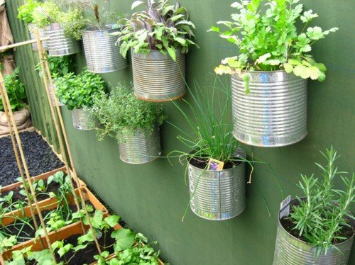 Herbs growing on the wall in recycled containers (via ewainthegarden)